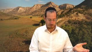 שיעורי משניות - מסכת ברכות - שיעור שני (VOD)