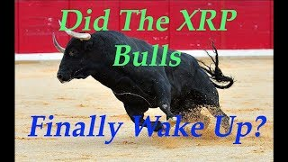 XRP King of Coins: Bulls Arrived, Will They Stay A While?