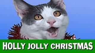 """JINGLE CATS """"Holly Jolly Christmas"""""""