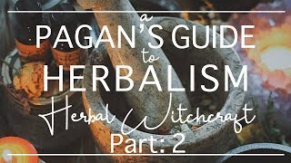 Herbal Witchcraft Part 2 II Tools, Storing + Drying, & Suggested Plants For Beginners