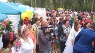 Весілля на Дні Шишацької громади. Пришиб/Гоголеве