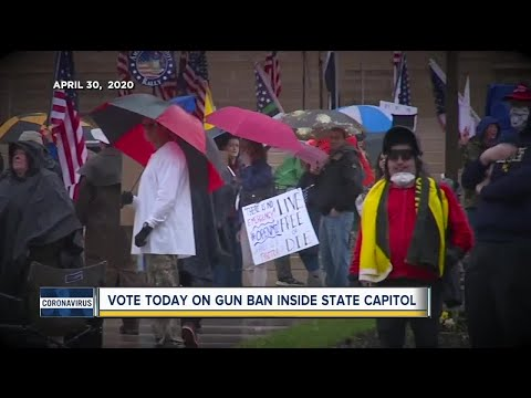 Michigan Capitol Commission to vote today on banning firearms from Capitol Building