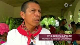 Especiales Noticias - El maíz y nosotros: unidos por la misma raíz