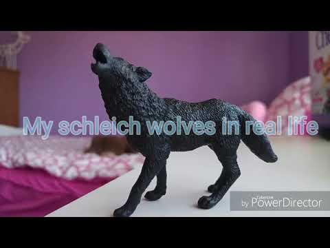 My schleich wolves in real life