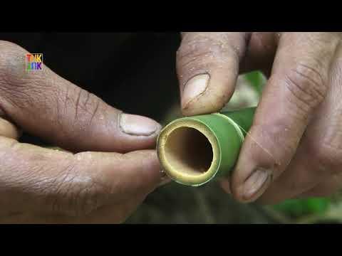 Ratanakiri. Kreung people. Bamboo flute making / Fabrication d'une flûte en bambou (2)