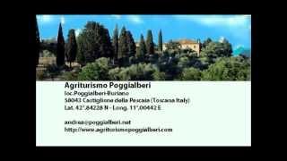 preview picture of video 'App.to Le Querce dell'agriturismo Poggialberi per vacanze a Castiglione della Pescaia'