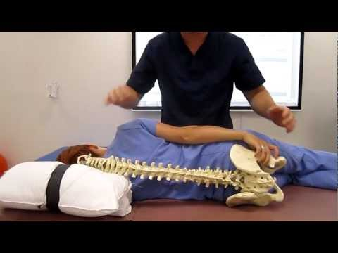 Wenn es weh tut Galle, ob während der Rücken schmerzt
