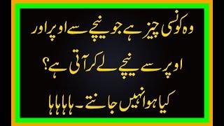 funny sawal Jawab in Urdu - Free video search site
