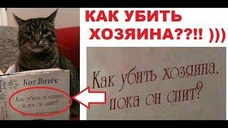 Лютые приколы. Кот хочет убить хозяина !!! :)))