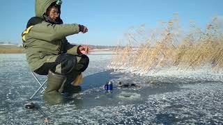 Зимняя рыбалка в челябинской области на ротана