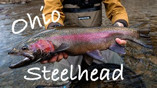 Fly Fishing for Steelhead in Small Ohio Creek! (Jan 2020)