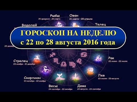 Гороскоп года рождения 2007
