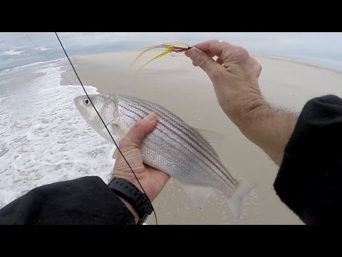 Dovè possibile fare la pesca