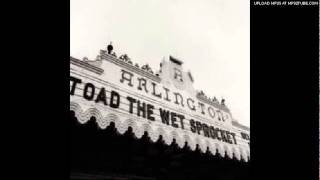 Toad The Wet Sprocket - Chile (Live)