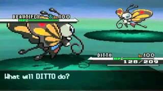 Beautifly  - (Pokémon) - Pokemon black and white sprite test: Wurmple + Silcoon + Beautifly + Cascoon + Dustox
