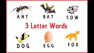 Learn to Read and Spell 3 Letter Words for Kids    Spellings    ANT, BAT,  .....   TITU Learning