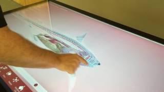 Volanti Touch Screen Table - LifeLiqe Educational Software