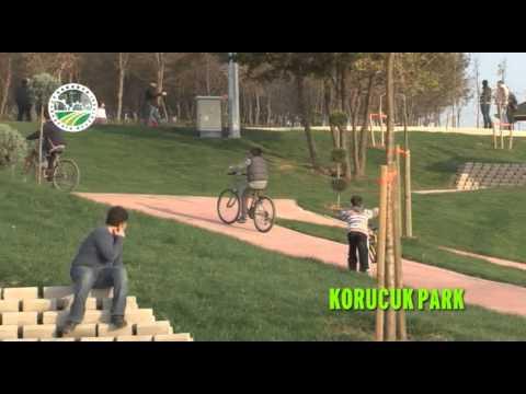 Sakarya Yenikent