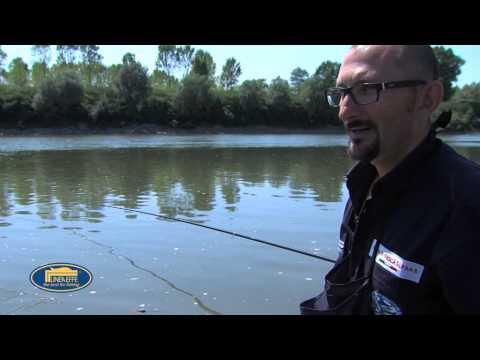 Grano di preparazione per pesca
