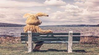 Arctic Monkeys - Settle For a Draw [Legendado PT-BR/Lyrics]