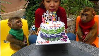 Wow Amazing Baby Monkey!! Dodo Very Surprise Birthday Cake 19 Months Old