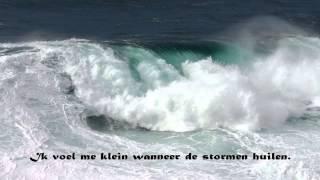 Will Tura   Aan het Noordzeestrand