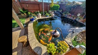 Complete Video Overview Of DIY 4,000 Gallon Koi Pond / RDF / Shower Filter / Moving Bed Filter