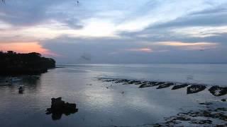 2014-05-15 Birds, Mushroom Beach, Lembongan