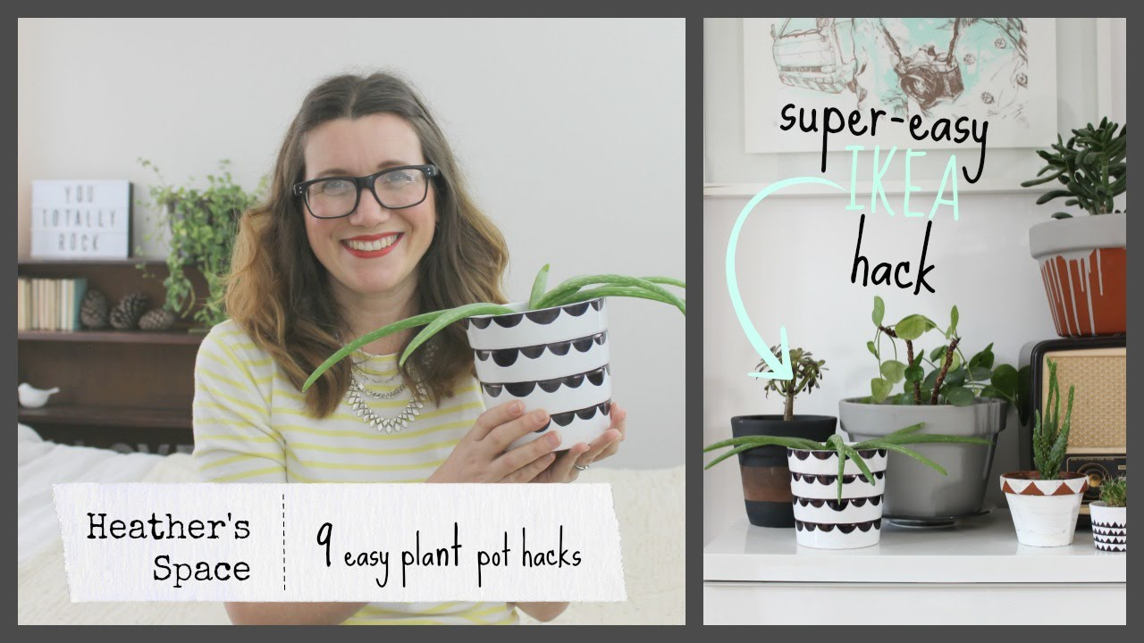 Catch up: February Heather's Space video round-up