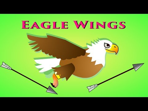 Video of Eagle Wings