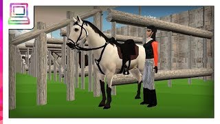 Horse Jumping Show 3D (Horse Game)