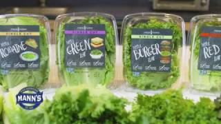 Fresh Leaf Farm's - Single Cut® Lettuces