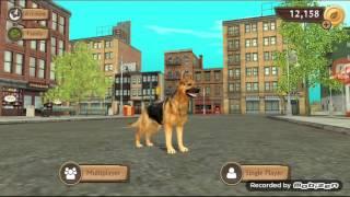 Симулятор собаки gor sim