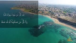 حالة شعرية : قصيدة للإمام الشافعي على مشاهد مدنية يافا