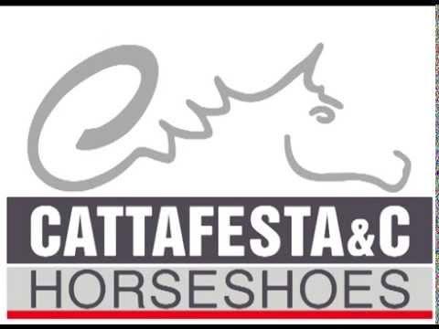 Corso/Convegno Gratuito di Mascalcia Cattafesta - Il Portale Del Cavallo 05/07/2014