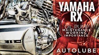 Yamaha Rx135100z Oil Pump Importance
