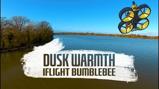 IFlight BumbleBee Cinewhoop FPV quad // Flight footage