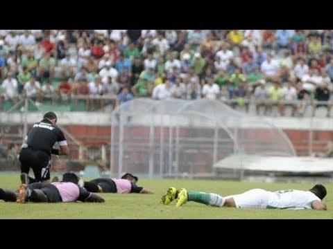 Пчелы атаковали футболистов в Эквадоре во время матча