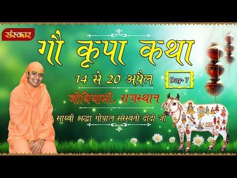 Live - Gau Kripa Katha By PP.Sadhvi Shradha Gopal Saraswati Didi -20 April   Nagour RJ   Day 7