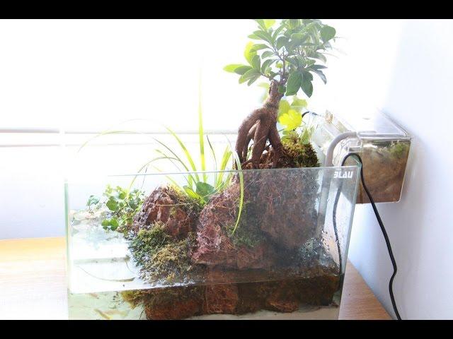 Paludario de peces y cangrejos 1/3 (Geosesarma Vampire y Guppys) | Acuarios ConanDanco
