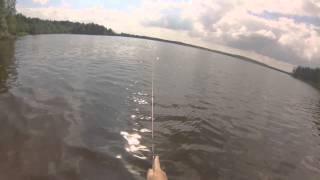 Кавголовское озеро рыбалка с берегами