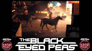 The Black Eyed Peas - Don't Stop The Party Music Video (lyrics)