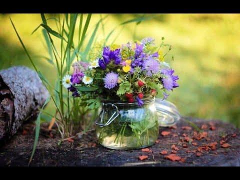 Почему в дом нельзя покупать искусственные цветы. Опасность искусственных цветов. Живые цветы в доме