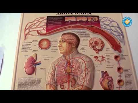 Хипертония, жлъчния мехур при деца