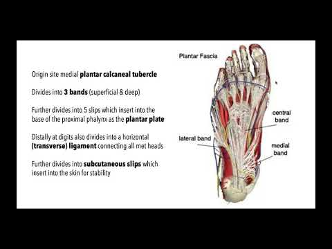 Medicamente pentru dureri articulare artritice