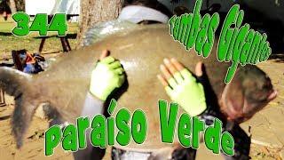 Programa Fishingtur na Tv 344 - Clube de Pesca Paraíso Verde