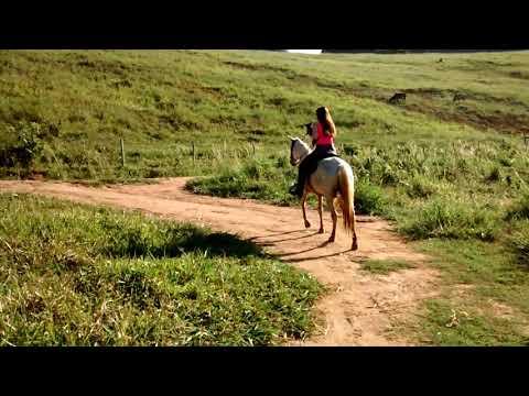 Gabi andando a cavalo em Barra de São Francisco