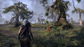 The Elder Scrolls Online Shadowfen Walking Through