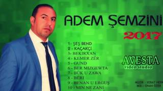 ADEM ŞEMZİNİ - ŞEŞ BEND (KUMAŞ)  (2017)