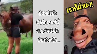 ถึงเราเป็นคนบางอย่างเราก็มีเหมือนม้า ร่างเป็นคนแต่หัวใจเป็นม้า... #รวมคลิปฮาพากย์ไทย